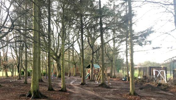 Woodland Park update