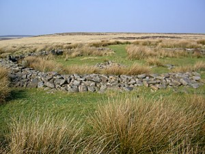 Barbrook 2 Stone Circle